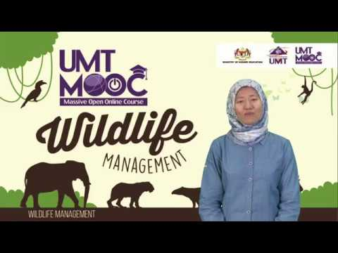 Topic 7 - Human Wildlife Conflict