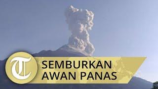 Gunung Merapi Semburkan Awan Panas Setinggi 3000 Meter