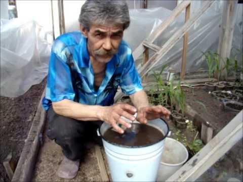Температура воды для полива