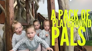 A PACK OF PLAYGROUND PALS
