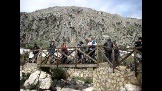preview picture of video 'Sportster.cc 1ª Reunion Cerdos Ibericos - Villaluenga del Rosario 1 y 2 de Noviembre de 2008'