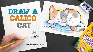 Draw a CALICO CAT