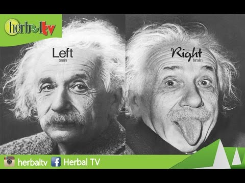 Video Cara Mengetahui Kamu Dominan  Otak Kiri Atau Kanan | How to Find Out the Left Brain or Right