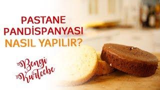 Pastane Pandispanyası Nasıl Yapılır? | Pandispanya Tarifi