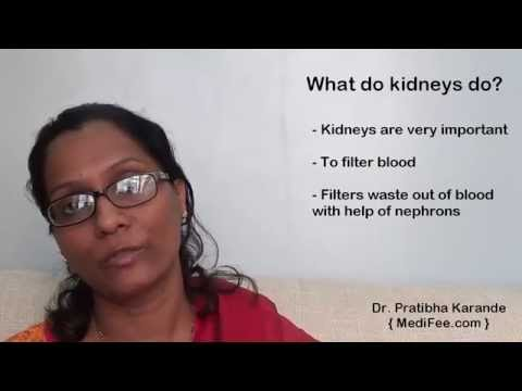Video Renal Profile - Routine Kidney Function Blood Tests