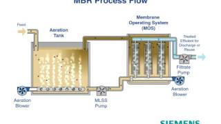 Siemens MOS Animation