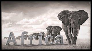 Africa (Sona Jobarteh - Gambia)