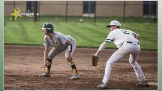 Medina Bees Varsity Baseball - Elite 8!