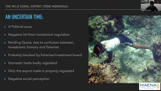 Indonesian Coral Industry, has anything changed? – Vincent Chalias – MACNA 2021