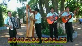 DÚO:MONGELOS-TORALES Y SU CONJUNTO - HOMENAJE AL DÚO:PEREZ-PERALTA - Videoclip's - Discos ARP