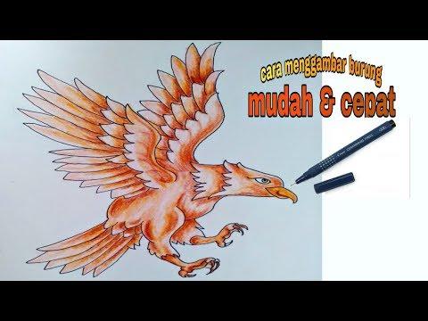 Unduh 520+  Gambar Burung Elang Dari Pensil  Paling Bagus