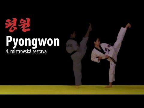 Dollyo chagi (Taekwondo round kick) – Martial Arts Videos