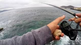 Рыбалка на тенерифе с берега лицензия