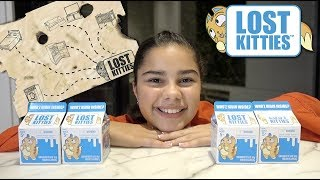 Searching for Lost Kitties | Grace's Room
