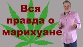 Вся правда о марихуане! РФ ЗАПРЕЩЕНО! ПОД ЦЕНЗУРОЙ! СМОТРЕТЬ ПОКА ЕСТЬ!!