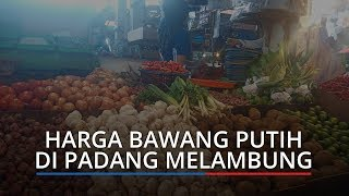 Harga Bawang Putih Melambung hingga Dua Kali Lipat di Pasar Kota Padang, Ini Kata Pedagang
