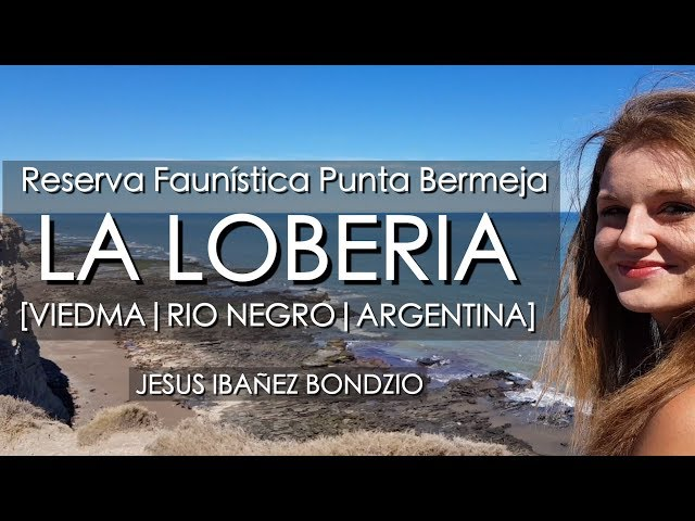 Reserva Faunística Punta Bermeja, Rio Negro, Argentina