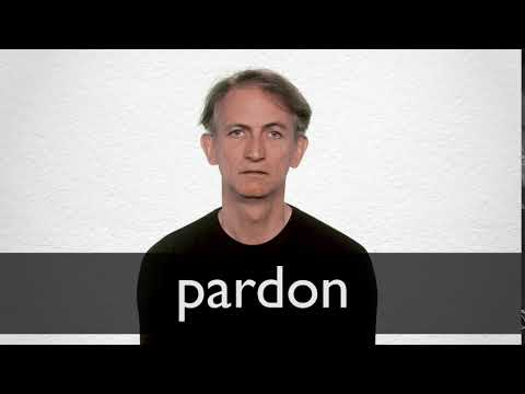 Spanish Translation Of Pardon Collins English Spanish Dictionary He didn't even say excuse me; spanish translation of pardon