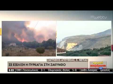 Καλύτερη η εικόνα των πυρκαγιών σε Ζάκυνθο και Λουτράκι | 16/09/2019 | ΕΡΤ