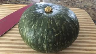 Is it too late to grow Kabocha Squash?