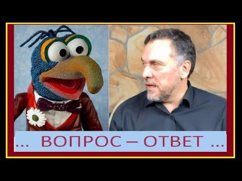 #МаксимШевченко отвечает на вопрос #ФёдораДвинятина.
