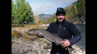 Рыбалка на таймень в монголии