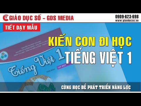 Tiết Dạy Mẫu Tiếng Việt 1: Bài 5E Kiến Con Đi Học