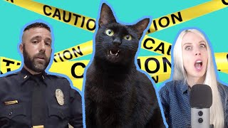 Prepping for a Disaster: Is Your Cat Ready?