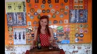 Degustação da Cerveja Lenhador Weiss