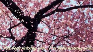Chris de Burgh-Missing You-Cover By Catalin(With Lyrics)