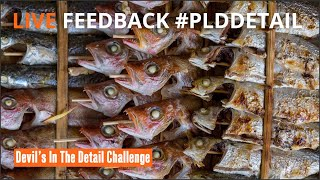 Lock Down Judging #plddetail