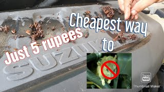 How to protect your car from rat? | Rat protection for car | Cheapest way to get rid off rats