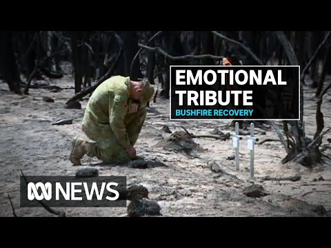 Kangaroo Island bushfire victims' relative proud to be honouring family legacy | ABC News