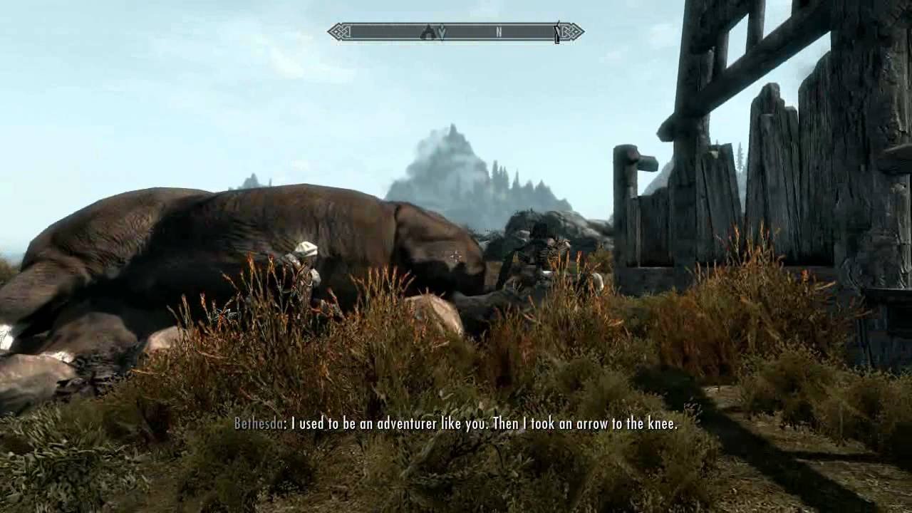 This Skyrim Mod Literally… Well, See For Yourself