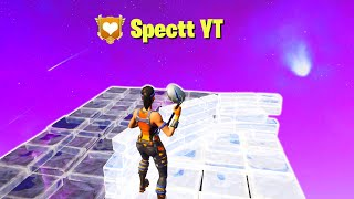 i spectated the best fortnite players in the world...