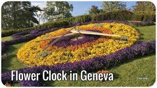 Jardin Anglais, Switzerland