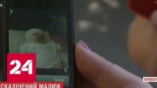 Воспитатель украинского детдома случайно ошпарила младенца кипятком - Россия 24