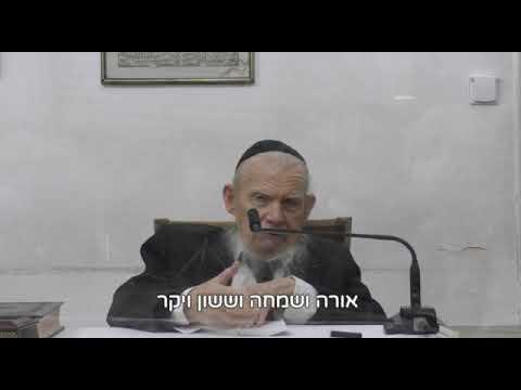 """הגרי""""ג אדלשטיין להיזהר בכבוד יהודי בפורים • צפו"""