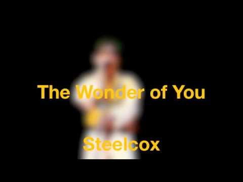 The Wonder of You - Vidéo - Steelcox