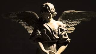 Angels At My Side (The Canvassing Song)