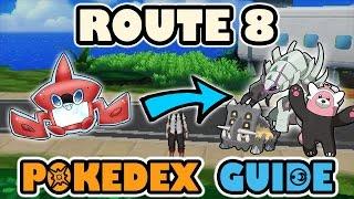 Stufful  - (Pokémon) - ROUTE 8 COMPLETE POKEDEX GUIDE - Pokemon Sun and Moon