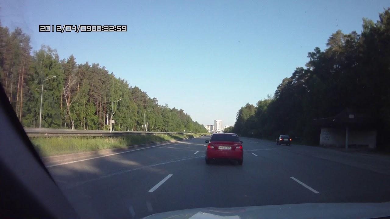 Кабаны выбежали на трассу около  Екатеринбурга