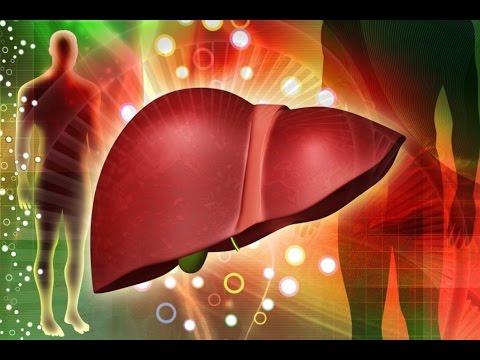 Хронические гепатиты и его лечение