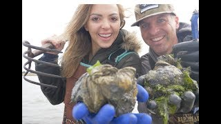 Wild Oyster Catch and Cook - How to Harvest and Cook Oysters