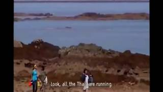 TSUNAMI, THAILAND. Never before seen footage.