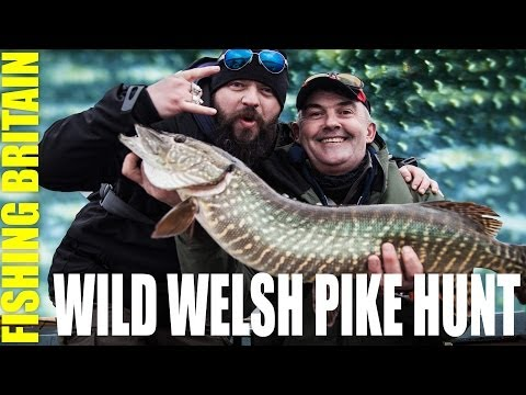 Fishing Britain – Big Welsh Pike in Trawsfynydd