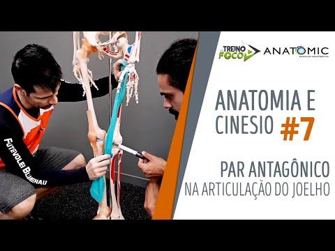 Tratamentul fonic al articulațiilor