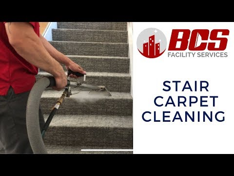 Carpet Cleaning   Dirty Carpet Steam Cleaning