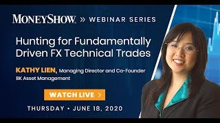 Hunting for Fundamentally Driven FX Technical Trades