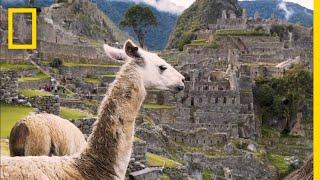 Journey Through Peru